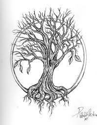treeoflife3